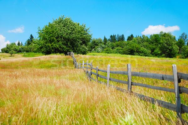 Village landscape Stock photo © zurijeta
