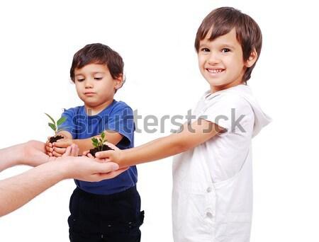 Little cute children holding green plant in hands Stock photo © zurijeta