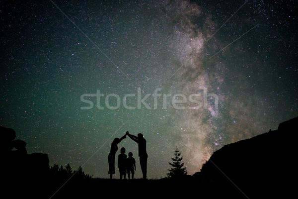 Mleczny sposób drzew góry niebo lasu Zdjęcia stock © zurijeta