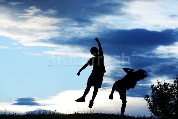 Mutlu çocuklar siluetleri çayır gün batımı Stok fotoğraf © zurijeta