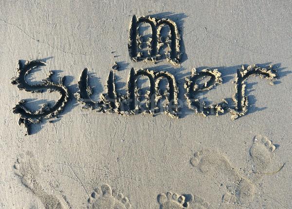 Arena hermosa surf vacaciones verano Foto stock © zurijeta