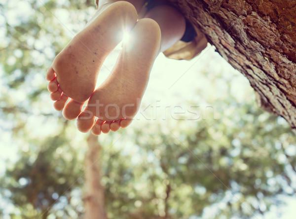 Séance arbre libre pieds liberté amour Photo stock © zurijeta