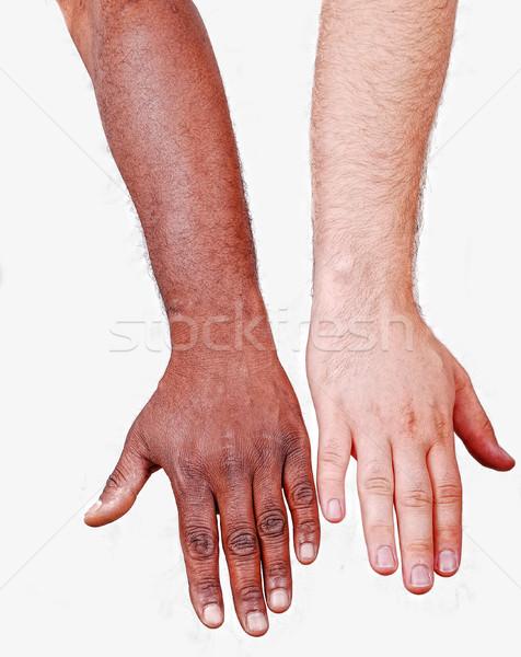 Bianco mano un altro nero uomo riunione Foto d'archivio © zurijeta