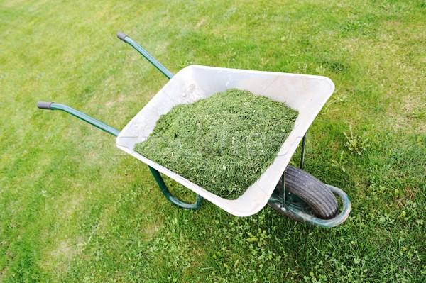 Jardinagem temporada verde gramado carrinho de mão grama verde Foto stock © zurijeta