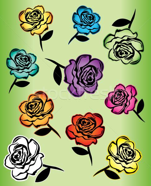 colored flower roses design illustration Stock photo © Zuzuan
