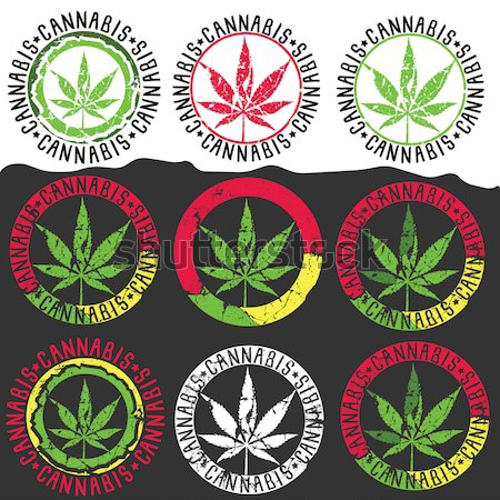 Marijuana leaf symbol stamps  Stock photo © Zuzuan
