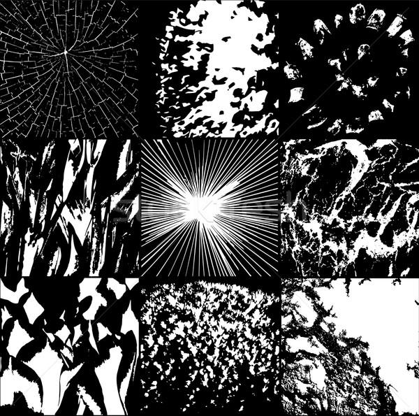 Hatları doku siyah beyaz soyut doğa dizayn Stok fotoğraf © Zuzuan