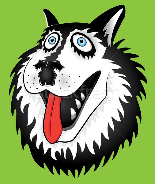 Husky cane ritratto illustrazione faccia design Foto d'archivio © Zuzuan