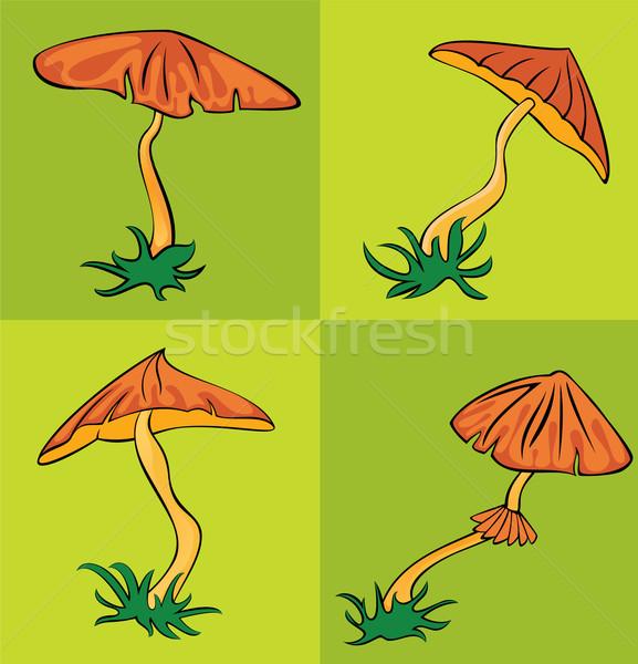 Najaar seizoen- cartoon champignon voedsel gras Stockfoto © Zuzuan