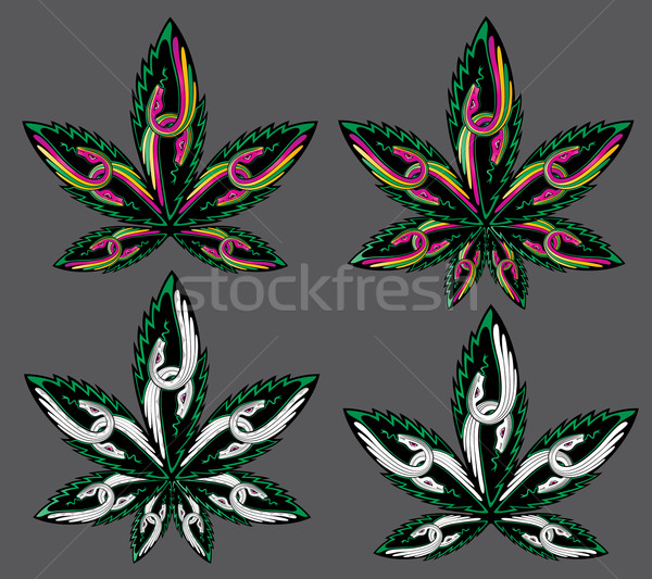 Esrar yaprak tıbbi yılan simge dizayn Stok fotoğraf © Zuzuan