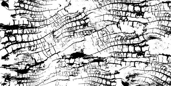 Fából készült vonalak textúra fa absztrakt természet Stock fotó © Zuzuan