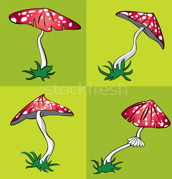 poisonous amanita mushroom with white dots vector illustration Stock photo © Zuzuan