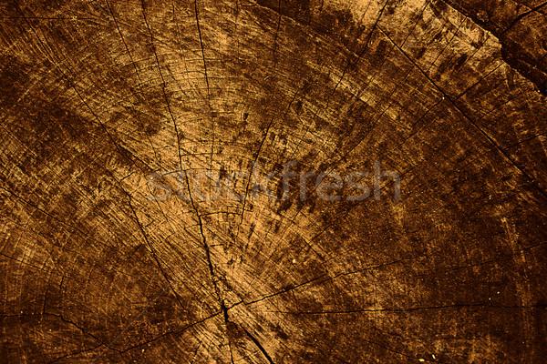 dirty background Stock photo © zven0