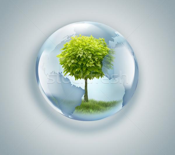świecie drzewo wewnątrz świetle świat technologii Zdjęcia stock © zven0