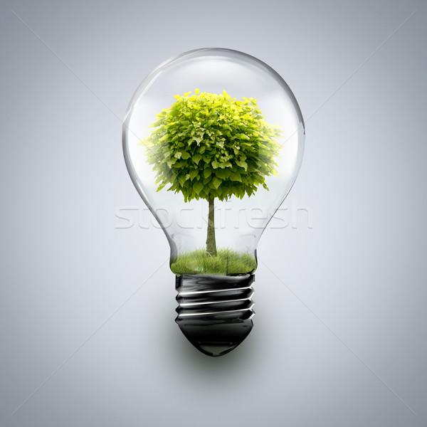 Stockfoto: Boom · binnenkant · gloeilamp · licht · blad · technologie