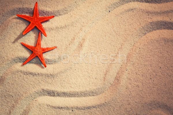 Nyár tenger homok tengeri csillag víz háttér Stock fotó © zven0