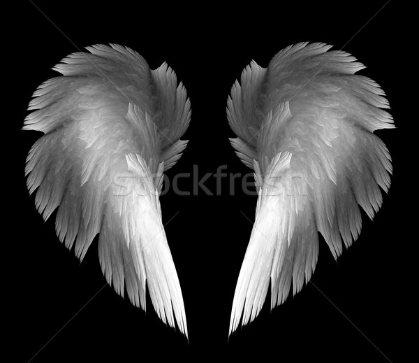 Angel wings Stock photo © zven0