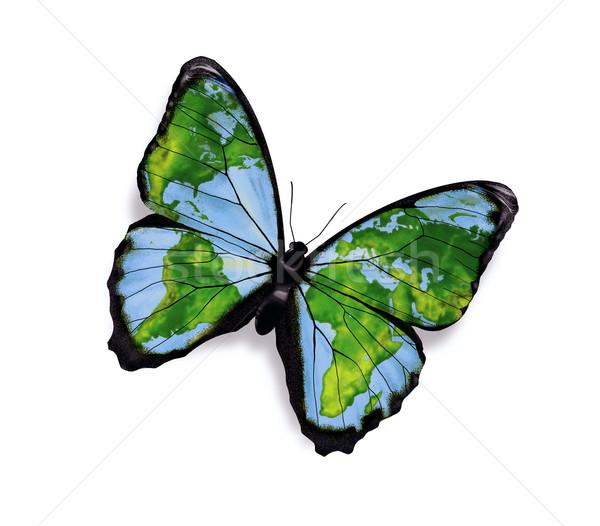Wolności mapie świata skrzydełka motyle charakter projektu Zdjęcia stock © zven0