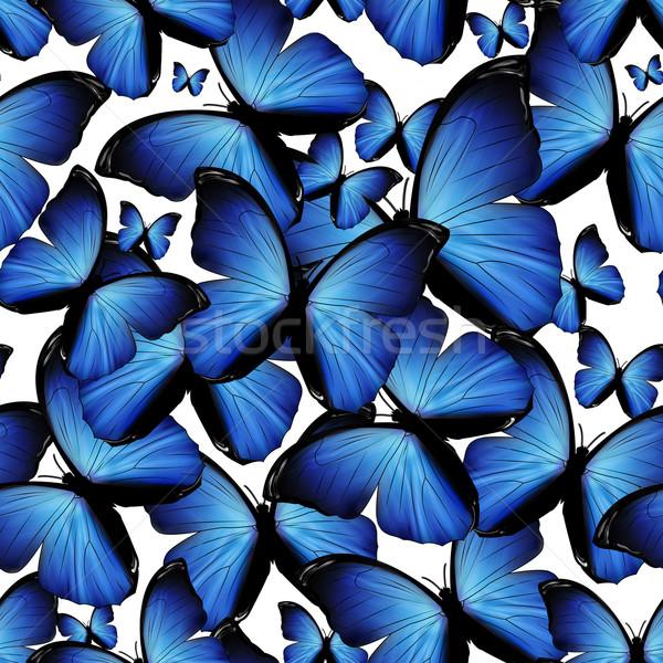 Pillangók végtelenített kék természet terv szépség Stock fotó © zven0