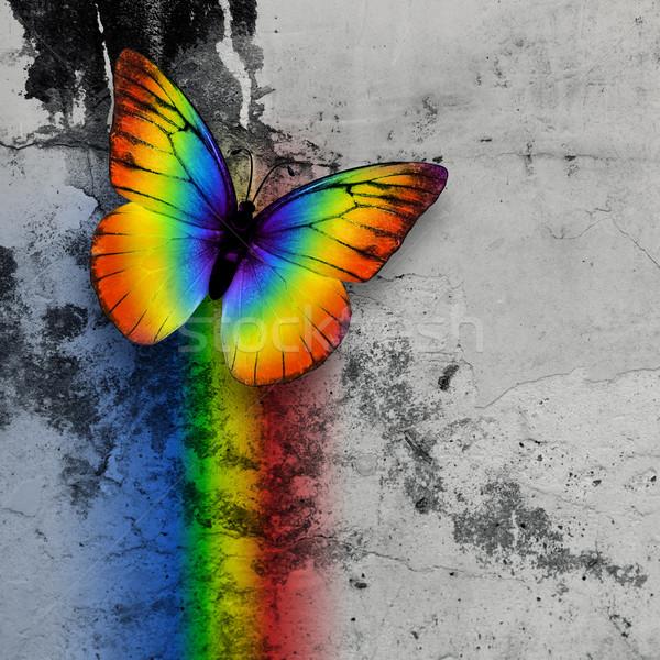 rainbow butterfly Stock photo © zven0