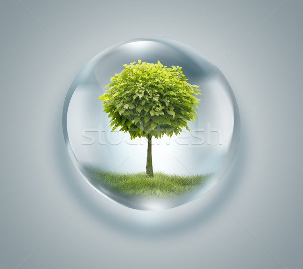 drop of water with tree inside  Stock photo © zven0