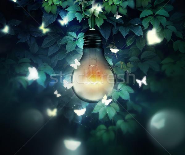 Unter Licht Glühbirne Schmetterlinge Schmetterling Design Stock foto © zven0