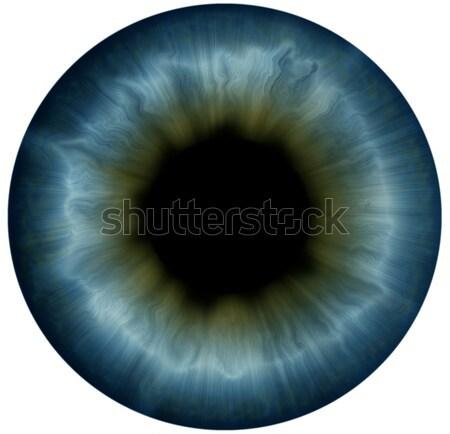 Yalıtılmış beyaz gözler sanat insan Stok fotoğraf © zven0