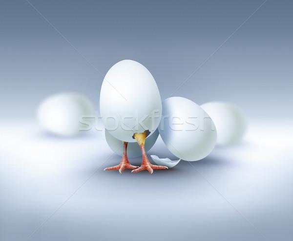 Yeni hayat görüntü yumurta Paskalya doğa yumurta Stok fotoğraf © zven0