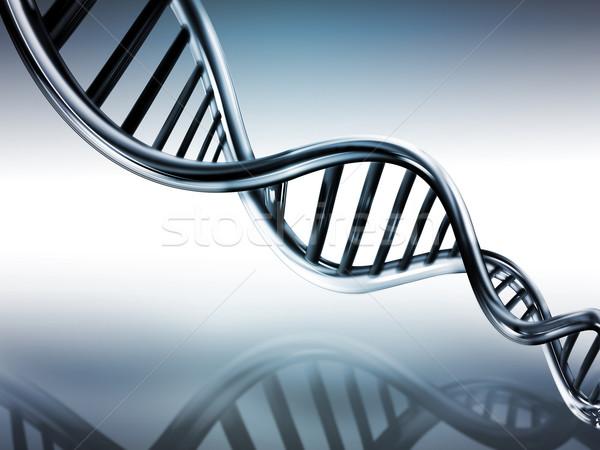 DNA strands Stock photo © zven0
