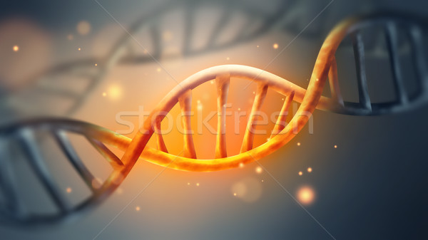 glowing DNA strand  Stock photo © zven0