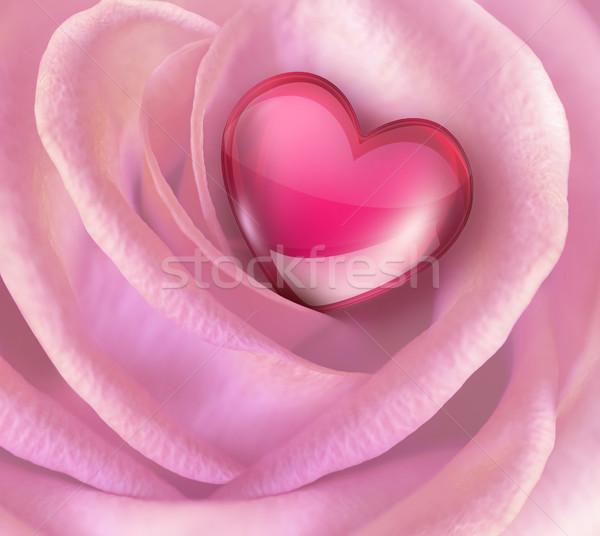 pink rose Stock photo © zven0