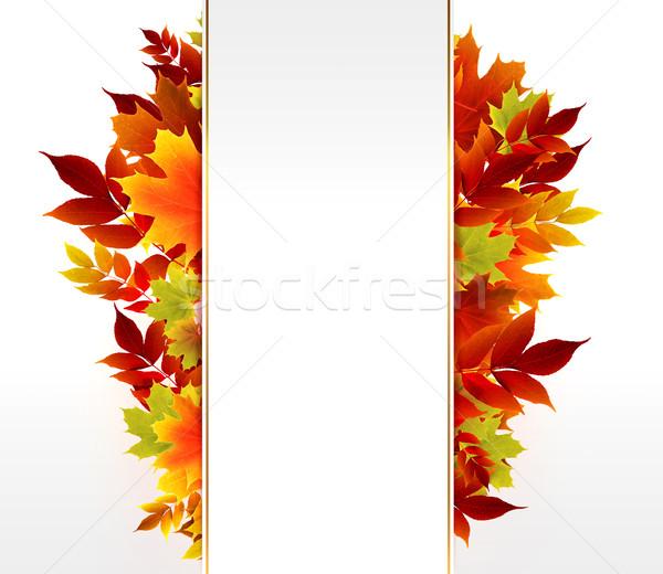 Sonbahar dizayn uzay metin yaprak arka plan Stok fotoğraf © zven0