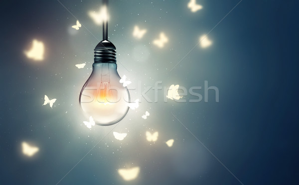 flying on light Stock photo © zven0