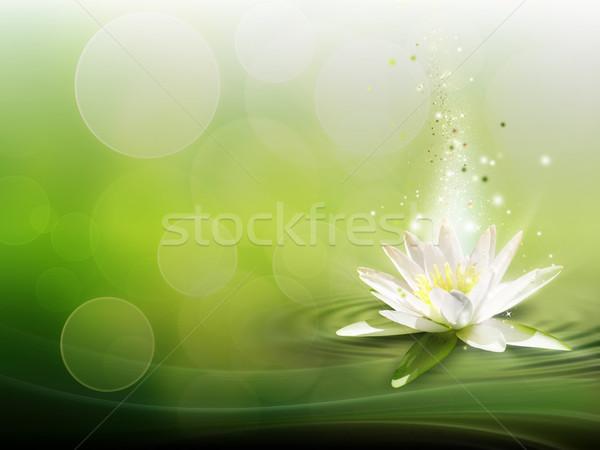 Stock fotó: Víz · liliom · természetes · virágok · absztrakt · fény