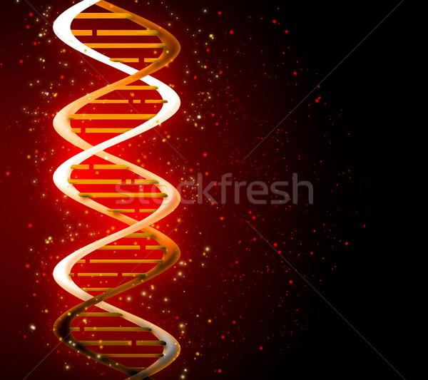 ДНК медицинской природы дизайна модель Сток-фото © zven0