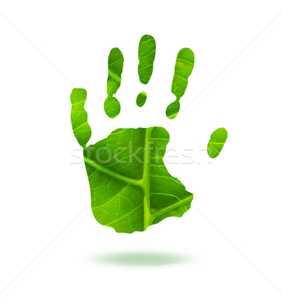 green handprint Stock photo © zven0