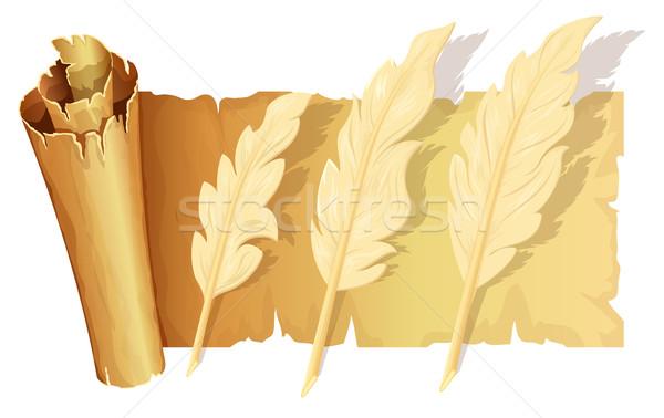 Establecer ganso pluma desplazamiento pergamino textura Foto stock © zybr78